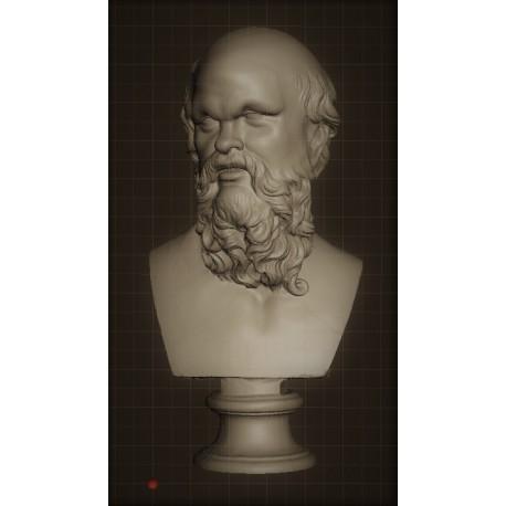 LB 332 Socrate - Museo Crawford h. cm. 50