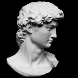 SM 51 Testa Davide di Michelangelo h. cm. 13
