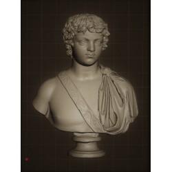 SM 59 Busto di Caracalla giovane  h. cm. 13