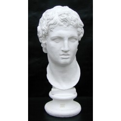 SM 61 Testa di Alessandro Magno h. cm. 13