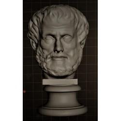 SM 64 Testa di Aristotele h. cm. 13