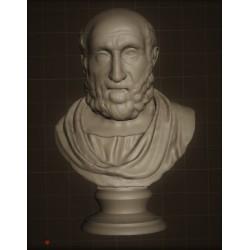 LB 335 Busto Hippocrate h. cm. 50