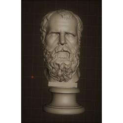 LB 337 Testa Socrate h. cm. 50