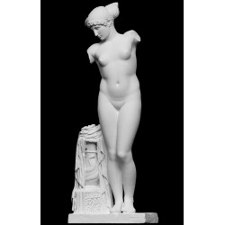 LS 145 Statua Venere dell'Esquilino h. cm. 180