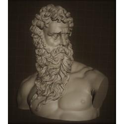 LB 340 Busto Poseidone h. cm. 40