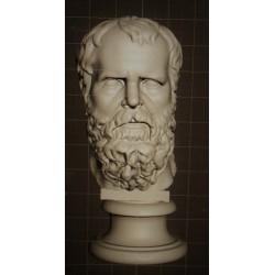 LB 251 Testa Socrate h. cm. 35