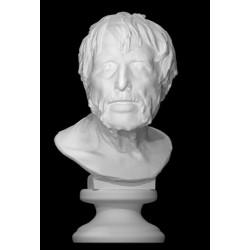 LB 235 Busto Pseudo Seneca h. cm. 59