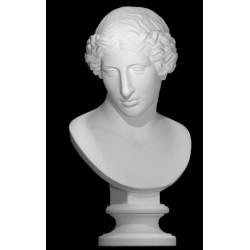 LB 238 Busto Amazzone di Policleto h. cm. 58
