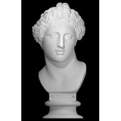 LB 239 Busto Apollo Lykeios h. cm. 58
