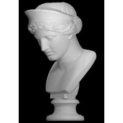 LB 242 Busto Hera Barberini h. cm. 60