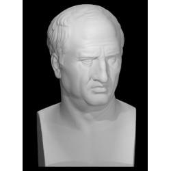 LB 231 Busto Cicerone h. cm. 65