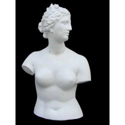 LA 7 Venere dei Medici Busto h cm. 65
