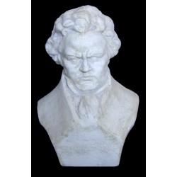 LB 31 Beethoven cm. 24