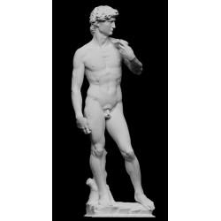 RID 42 Statua Davide di Michelangelo h. cm. 102